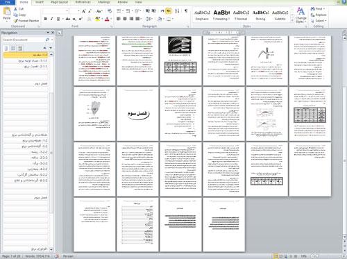 تحقیق دربارهاکولوژی برنجدارای 28 صفحه